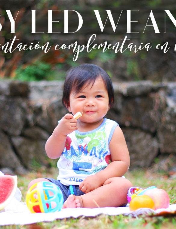 Baby Led Weaning: alimentación complementaria para bebés autoregulada