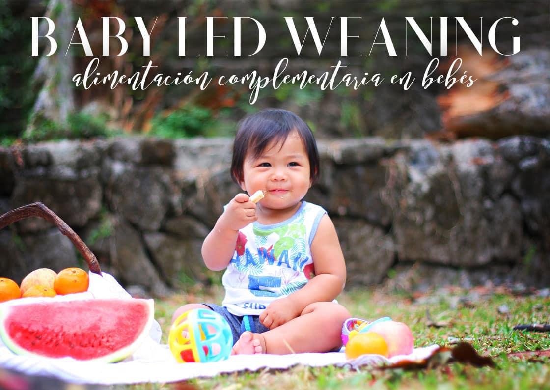 baby led weaning: alimentación autoregulada bebés