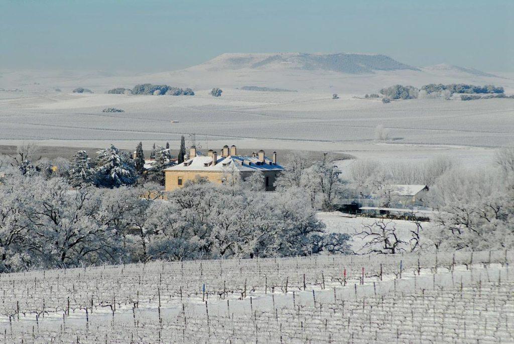 Bodegas Pradorey nevadas